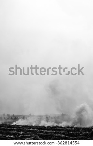 Black and white color of wildfire and smoke cause the air pollution and global warming - stock photo
