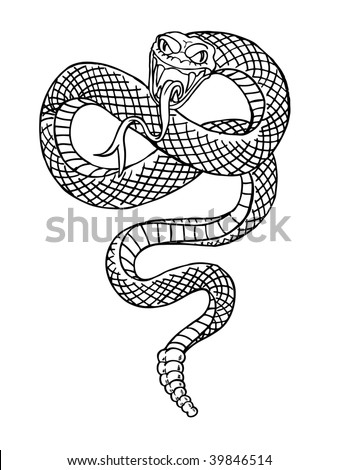 Black and white illustration of a rattle snake preparing to strike