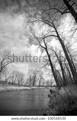 Black and white image of a gentle flowing stream in the trees with storms clouds looming