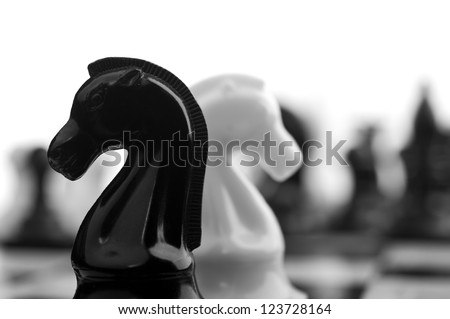 black and white knights on background - stock photo