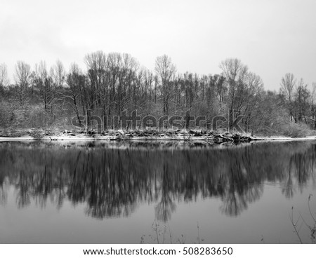 black and white photography reflections of the shore and woods in the river