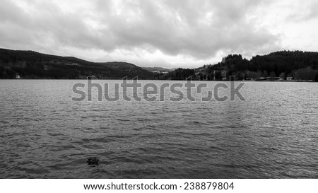Black and White Picture of the Titisee Lake in Winter. Picture from the Black Forest, Germany