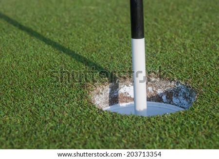 Black and White Pin in Golf Hole - stock photo