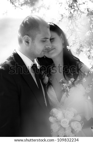 Black and white portrait of groom and bride behind the tree - stock photo