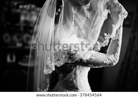 Black and white portrait of young  stylish brunette bride in the room - stock photo