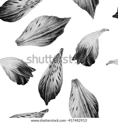 Black and white seamless watercolor pattern petals Alstroemeria