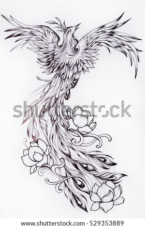 Black white sketch beautiful phoenix flowers stock illustration black and white sketch of a beautiful phoenix with flowers mightylinksfo