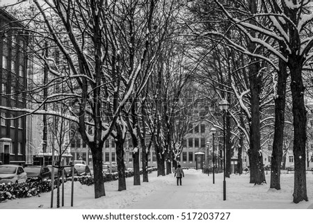 Black and white snowy park