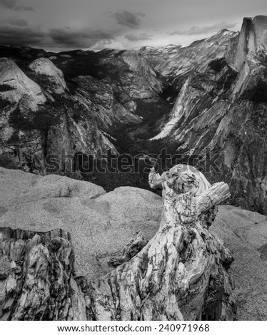 Black and White View of Yosemite Valley from Glacier Point with a dead tree branch in the foreground. - stock photo