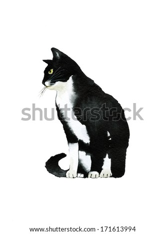 Black and white watercolor cat sits in profile - stock photo