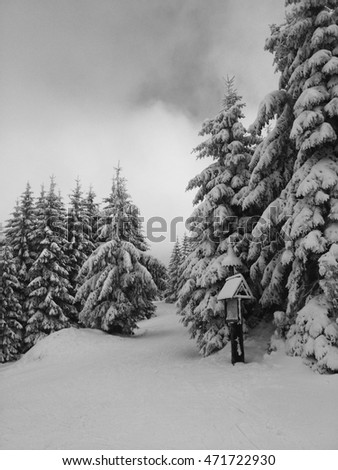 Black and white winter photo of the snow-covered trees and little sign on the top of the mountains in Czech Republic.