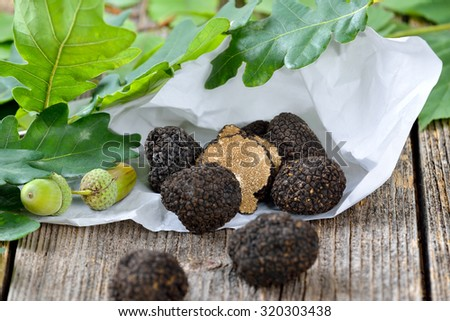 Black autumn truffles from France with wrapping paper and leaves of oak and beech - tuber uncinatum - stock photo