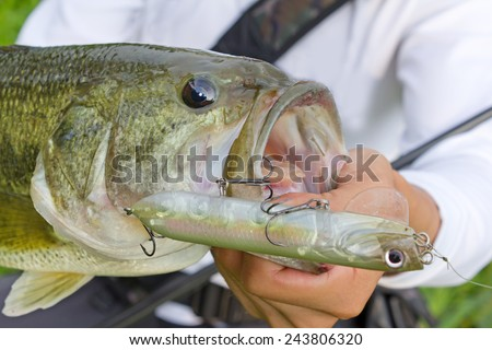 Black bass Fishing - stock photo