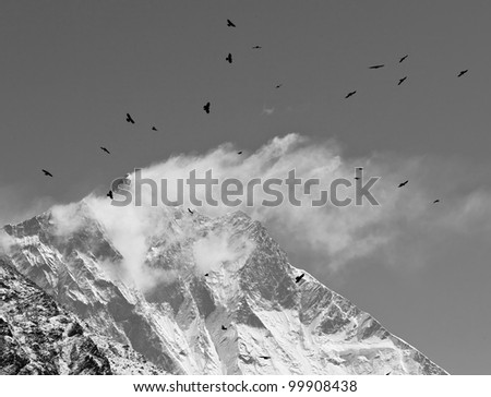 Black birds and snow flags on the top of the Lhotse (8516 m), black and white - Mt. Everest region, Nepal - stock photo