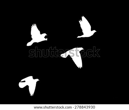 black blue silhouette on a white background - stock photo