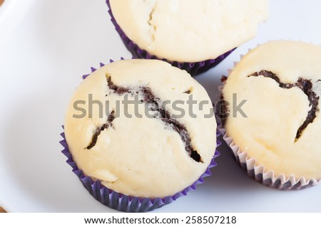black bottom cupcake, a chocolate cupcake with cream cheese on top - stock photo