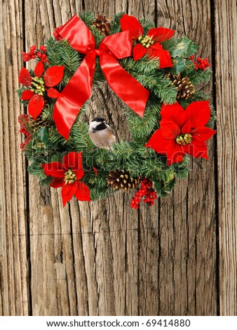 black-capped chickadee sitting in a christmas wreath - stock photo