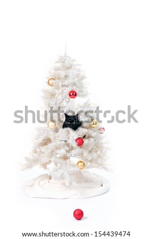 black cat in a christmas tree - stock photo