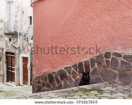 black cat in a hisotrical italian village background