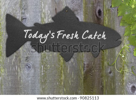 Black Chalkboard Fish  Restaurant Menu Copy Space For Fresh Seafood Over Distressed Grunge, Vintage, Aged And Green Moss Covered Wood Background Framed With Grape Leaves And Tendrils