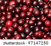 black cherry in the background - stock photo