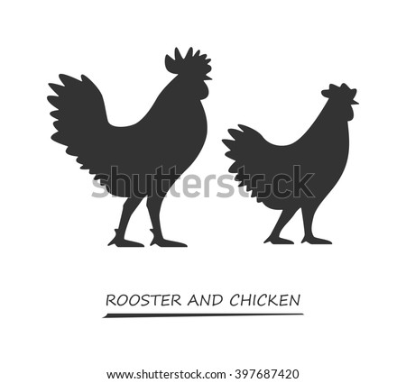 Black chicken on a white background. Silhouette rooster. Chicken logo. Black rooster symbol. - stock photo
