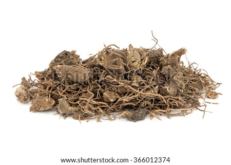 Black cohosh root herb used in natural alternative herbal medicine over white background. Used to treat menopausal and pre menstrual symptoms in women. Actaea racemosa. - stock photo