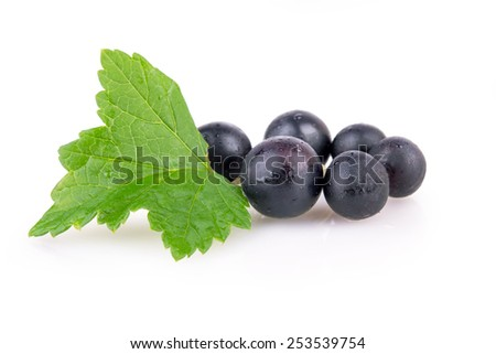 black currant berries with leaves closeup - stock photo