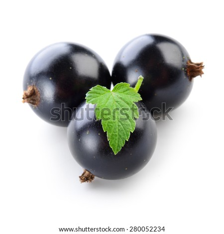 Black currant isolated on white. - stock photo