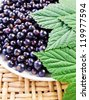 black currant,ripe berries and green leaves. - stock photo