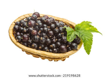Black currant with green leaf - stock photo