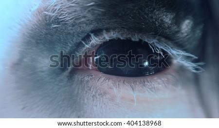 Black demon eye. Macro. - stock photo