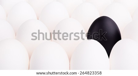 black egg between many white eggs on white background - stock photo