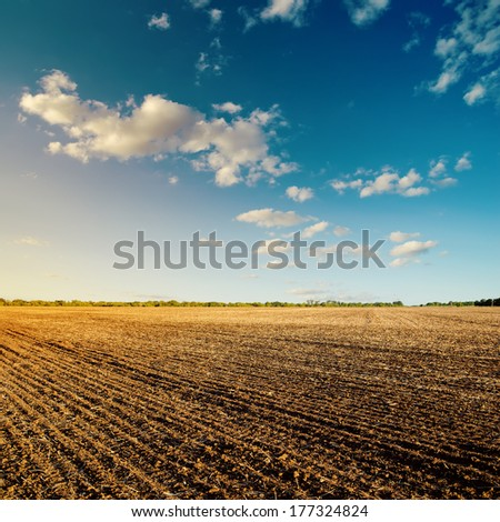 black field after harvesting and blue cloudy sky