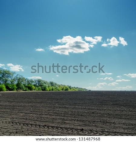 black field under cloudy blue sky - stock photo