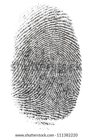 Essays on fingerprints