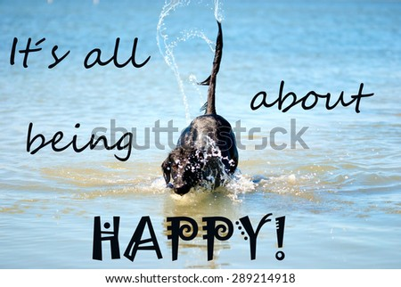 Black Flat Coated Retriever Dog Playing Or Swimming In The Ocean Or The Water Or Sea. English Life Quote It Is All About Being Happy. Dog Has Fun And Enjoy The Water. - stock photo