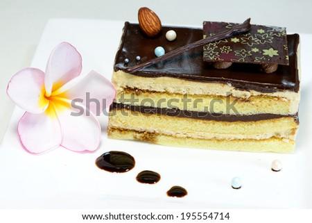 Black Forest Cake - stock photo