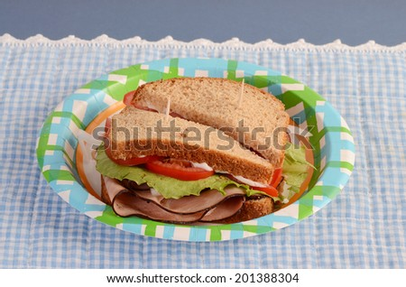 Black Forest Ham with lettuce, tomato, mayonnaise, lettuce, onions on whole grain bread on paper plate against blue gingham background. - stock photo