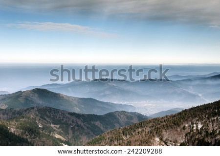 Black Forest Valley - stock photo
