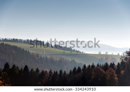 Black Forest View - stock photo