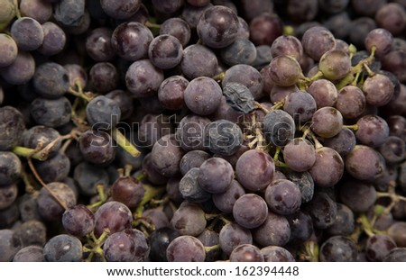 black grapes as background - stock photo