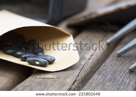 Black green beans seeds in packet on garden table ready for planting. - stock photo