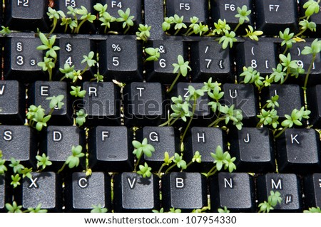 Black keyboard with garden cress - stock photo