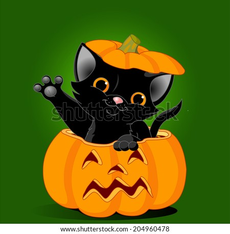 Black kitten is jumping out of a Halloween pumpkin. Background is separate - stock photo