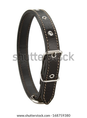 black leather dog collar - stock photo