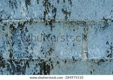 Black mold on brick wall texture.Background - stock photo