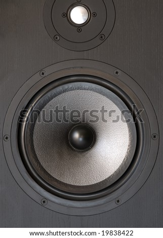 Black music loudspeaker with woofer and tweeter.