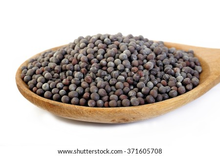 black mustard seeds in wooden spoon  - stock photo