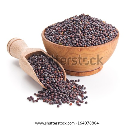 black mustard seeds isolated on white background - stock photo
